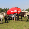 Baler Mascar Monster at the stud of family Dobrovsky